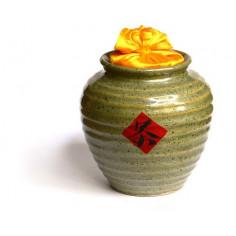 Светло-зеленая чайница Сян Тао