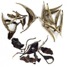Знакомство с белым чаем (начальный уровень)