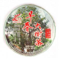 Чай с больших деревьев, собранный ранней весной