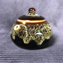 Чайник «Сиши» в стиле яобянь_5255