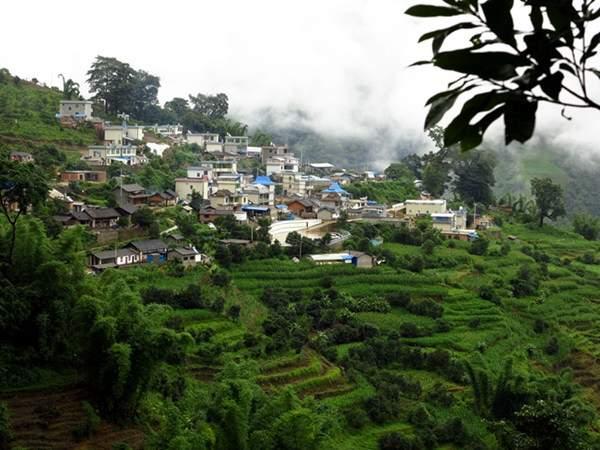 Чайная деревня Биндао